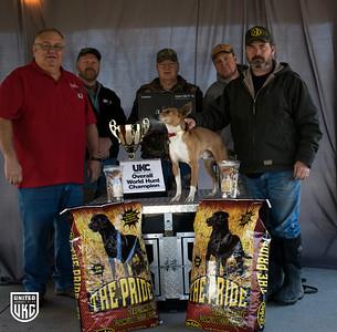 2018 UKC Feist Squrrel Dog World Hunt Champion