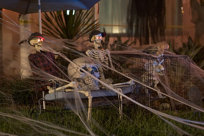 Skeletons and spider webs Halloween holiday night