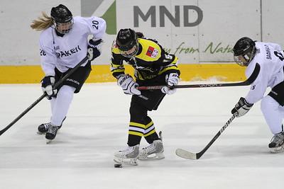 Официальный сайт Федерации хоккея России объявил о создании Женской хоккейной лиги.
