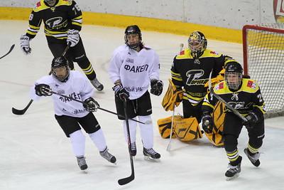 В чемпионате России среди женских команд челябинский Факел дважды проиграл команде из подмосковного Дмитрова