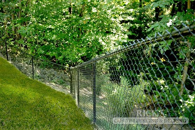 4139 - Black Chain Link Fencing