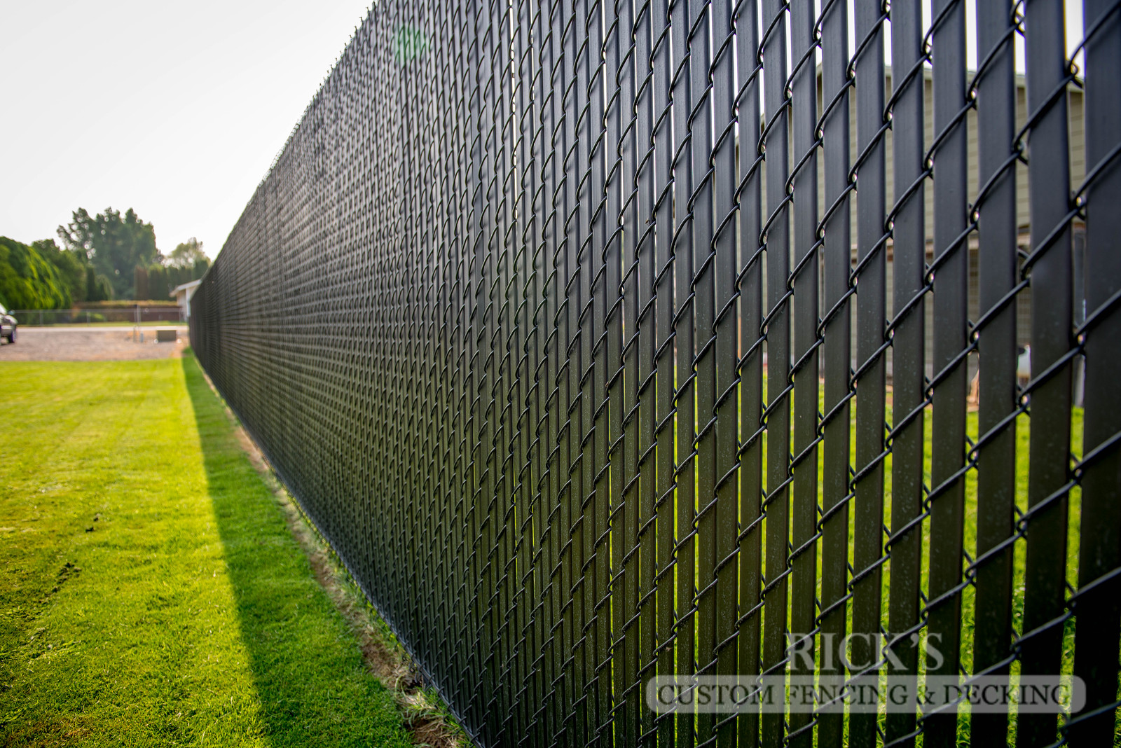 4109 - Black Chain Link Fencing with Black Slats