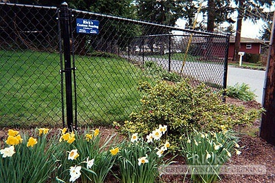 4141 - Black Chain Link Fencing