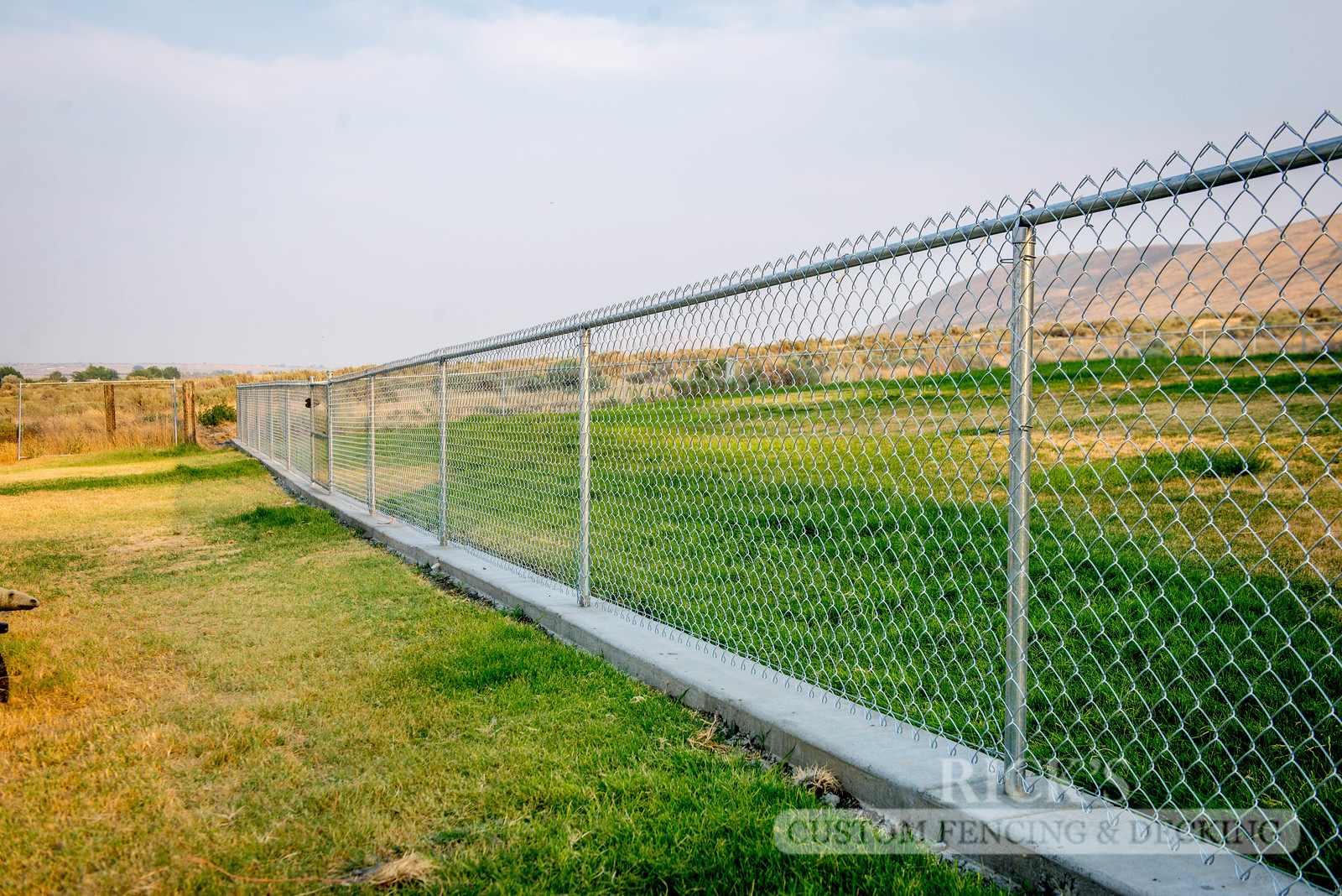 4119 - Galvanized Chain Link Fencing