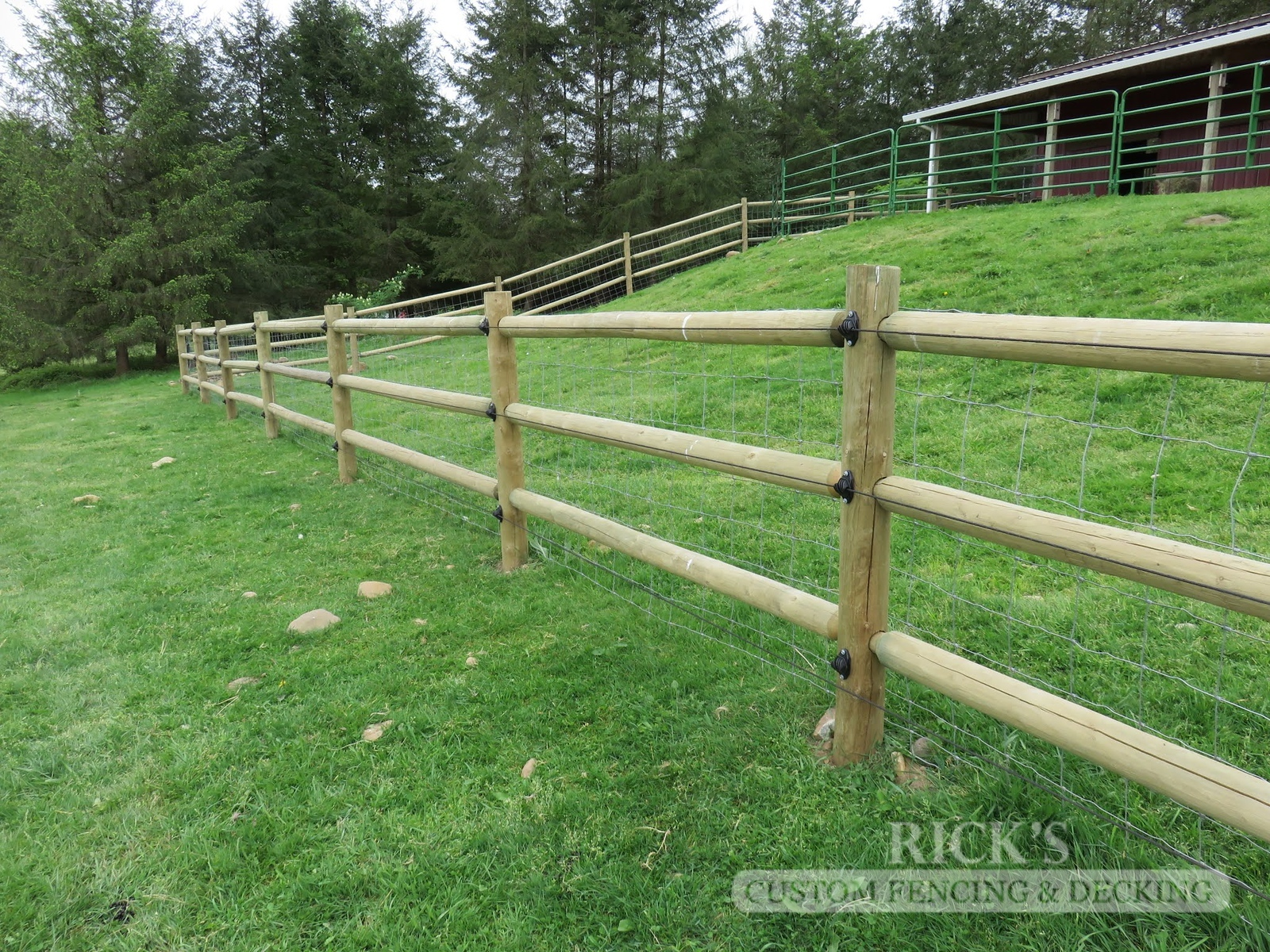 2449 - Wood Pasture Fencing