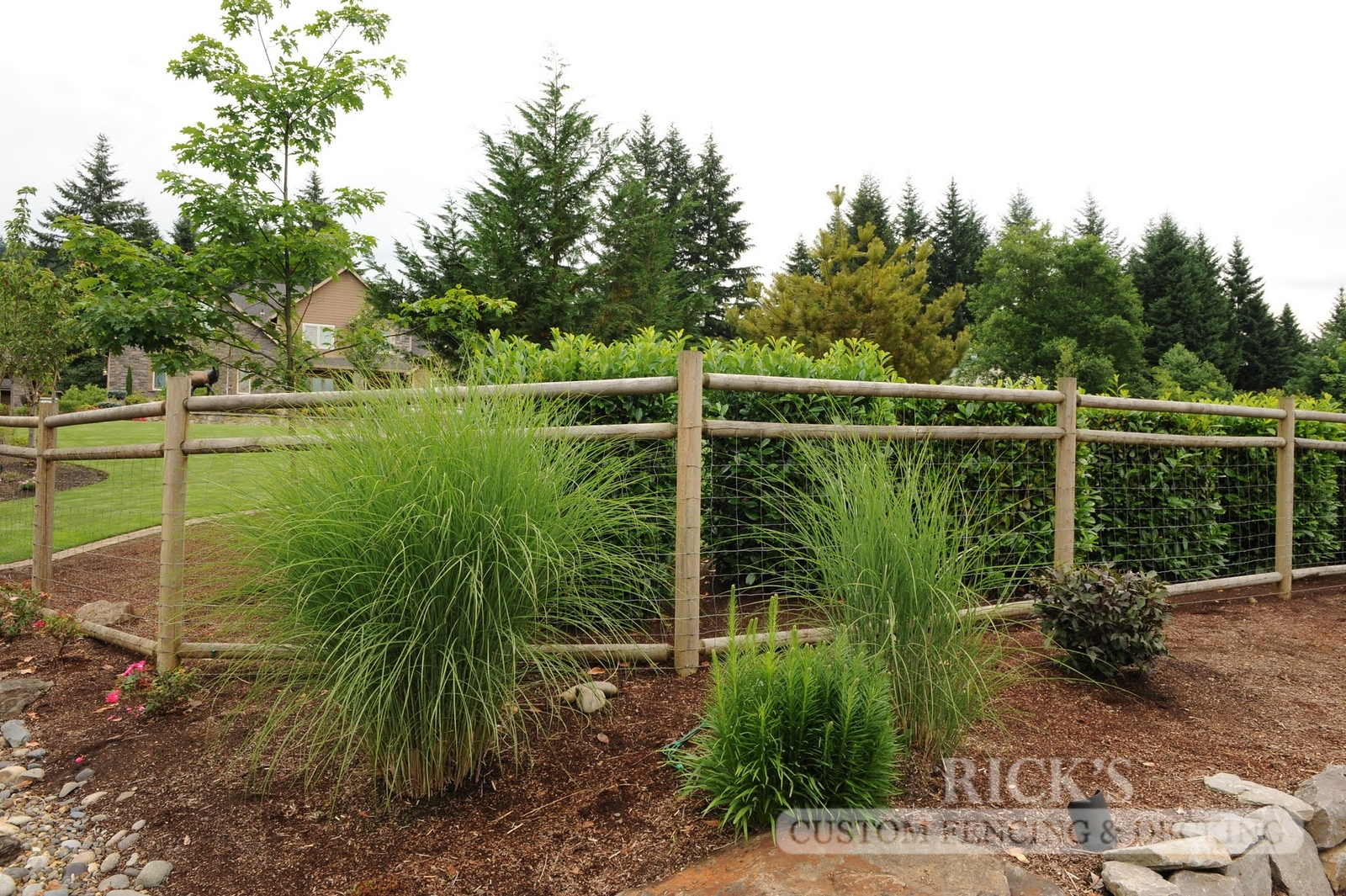 2451 - Wood Pasture Fencing
