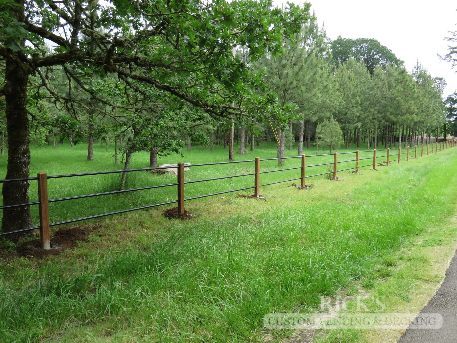4305 - Pipe Rail Fencing