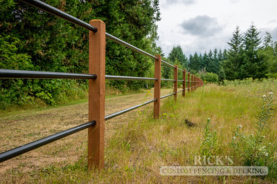 4301 - Pipe Rail Fencing