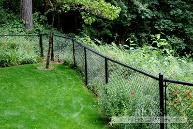 4138 - Black Chain Link Fencing