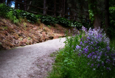 Schoepfle Gardens 2014 (128)-Edit 300