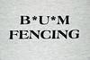 Bum Fencing