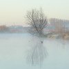A Winter Morning on the River Cam