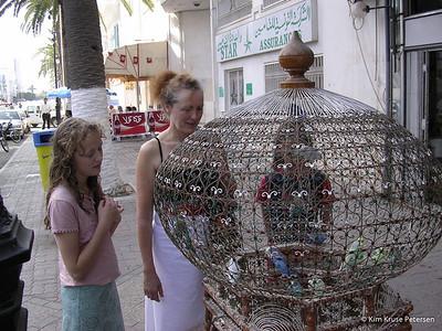 Tunesien - Efterårsferie 2004