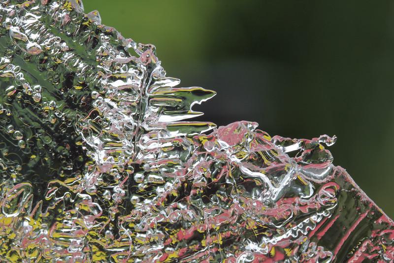Diagonal Ferns