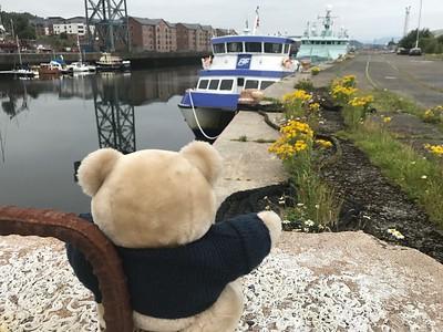 Ali Cat having a wee rest at James Watt Dock