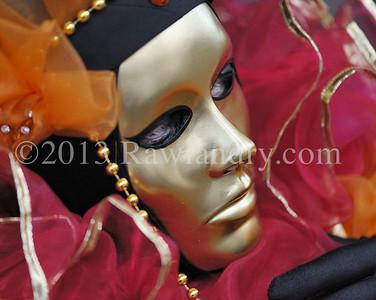 Carnaval de Venise 2013DSC_6919 72dpi
