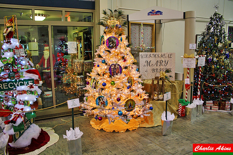 Trees decorated by community organizations and businesses