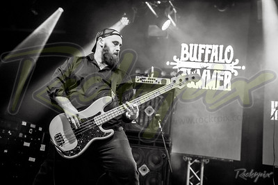 ©Rockrpix - Buffalo Summer