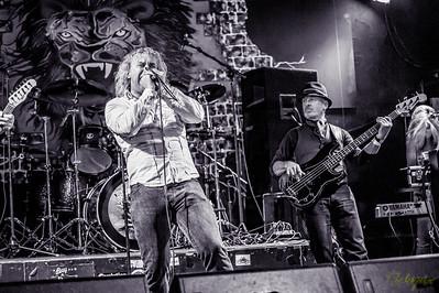 ©Rockrpix - Damo Fawsett Band