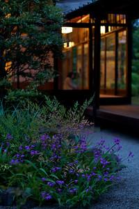 Detail from a Japanese Garden.
