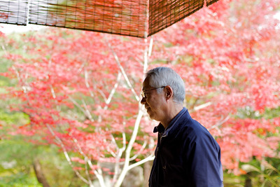 Guide explaining Garden View of Nishimura Villa  Shrine Priest Home south of Kamigamo Jinja Shrine with Autumn Maple Foliage