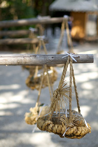 Crop Harvest Offering at Kamigamo jinja Shrine in Kyoto  World Cultural Heritage Site in Autumn