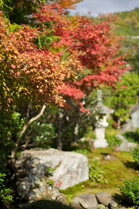 Autumn Foliage at Nishimura Villa (Shinto Priest Home), Traditional Garden  Situated South of Kamigamo Jinja Shrine, Kyoto, World Cultural Heritage