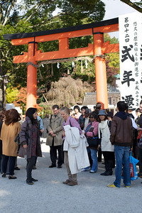 Sightseeing at Kamigamo jinja Shrine in Kyoto with Guide  World Cultural Heritage Site in Autumn under Red Entrance Gate