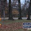 Winter-Night-Lights-13-2911528883-O