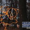 Winter-Night-Lights-14-2911528902-O