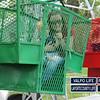 Family 4th Fest Hawthorne Park (10)