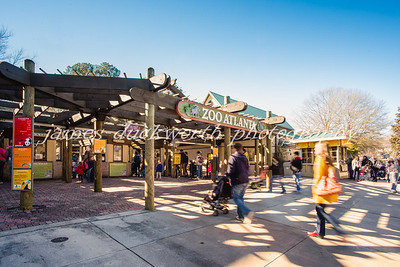 Families enjoy the Atlanta Zoo on a warm January Day!