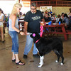 Debbie Blank | The Herald-Tribune<br /> The Liberty Park Pavilion, with its new lights and ceiling fan, was the place to eat a vast variety of foods and chat with friends. Leah and Rick Crowe, Batesville, and their Great Dane mix are checking out the scene.
