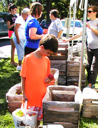 Debbie Blank | The Herald-Tribune<br /> Carson Weberding, 8, Oldenburg, fills a peck-size bag with apples at the popular Villa Orchard stand.