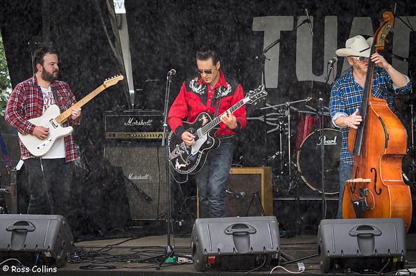 Cuba Dupa Festival, Wellington, 28 March 2015