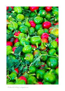 Chilis, Pueblo Chili and Frijole Festival