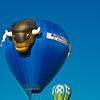 Buffalo Balloon, Albuquerque Balloon Fiesta