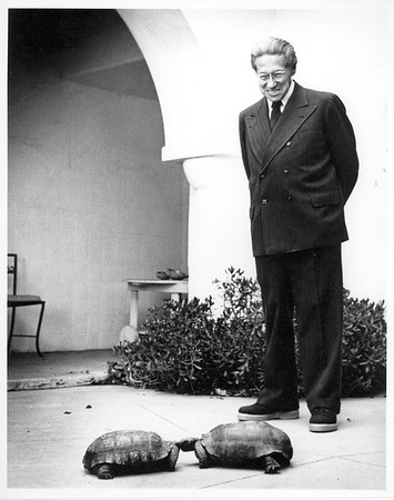 Feuchtwanger looking at his tortoises, Pacific Palisades, Calif.