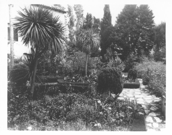 View of the garden in the courtyard, with a wall of the house, Villa Aurora, to the left