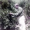 Feuchtwanger standing next to orange tree, facing to the left, holding either picked or unpicked orange in his left hand, Pacific Palisades, Calif.