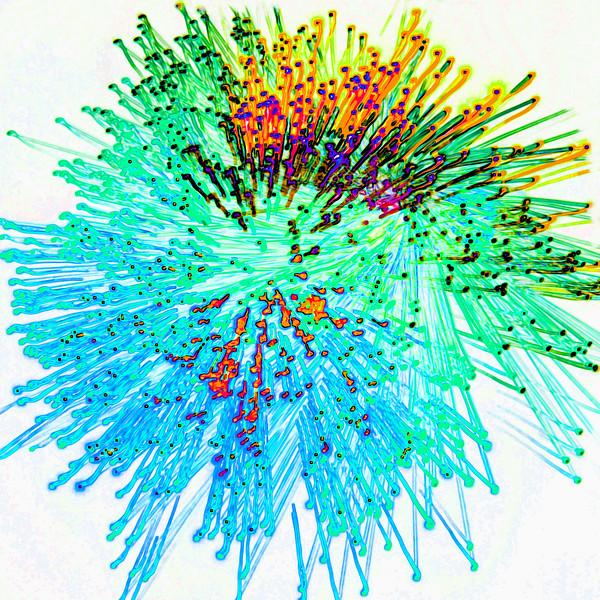 Fibre Optics 3~10861-2ges.
