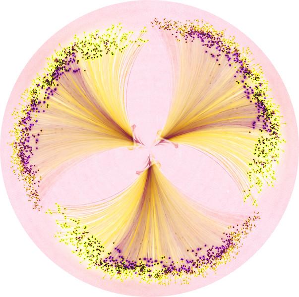 Fibre Optics 2~10824-3pcr.