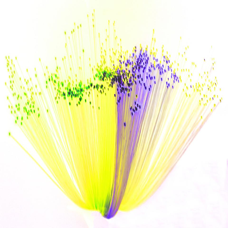 Fibre Optics 1~10806-1sq.