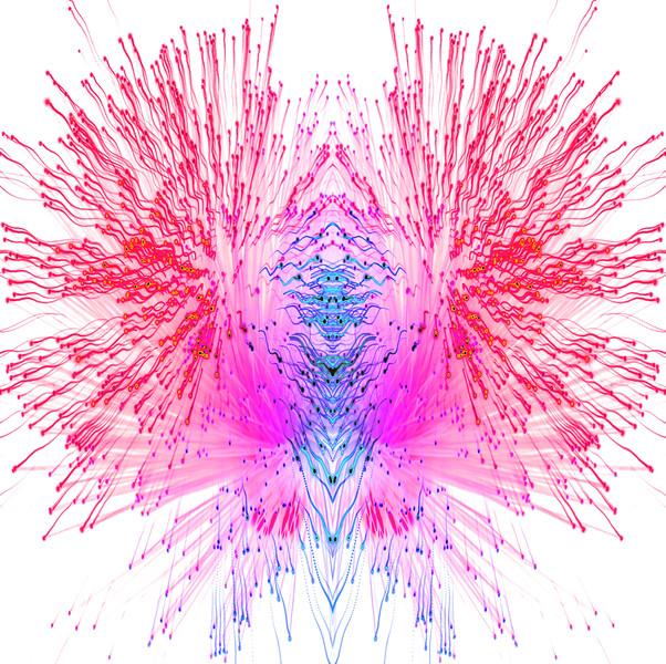 Fibre Optics 3~10862-3mis.