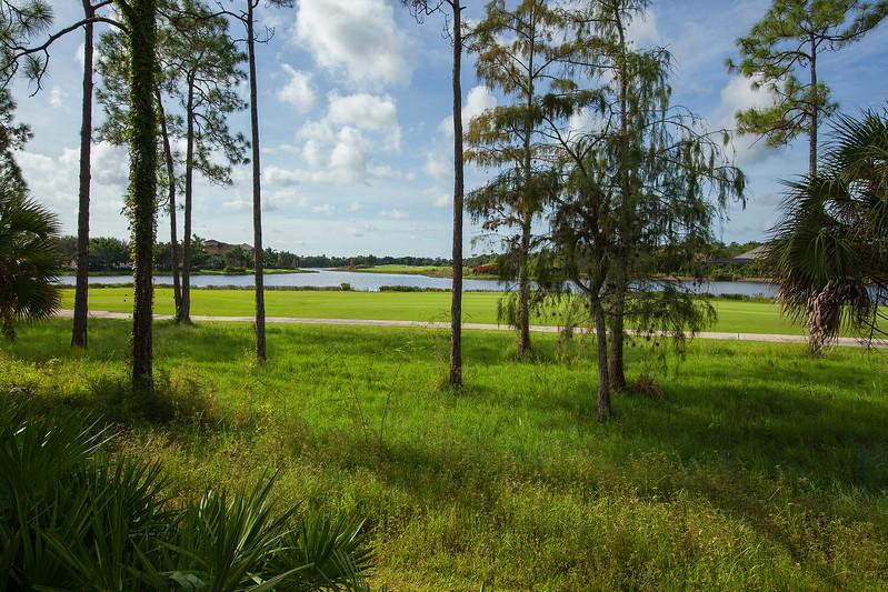 Fiddlers Creek - Deer Crossing View