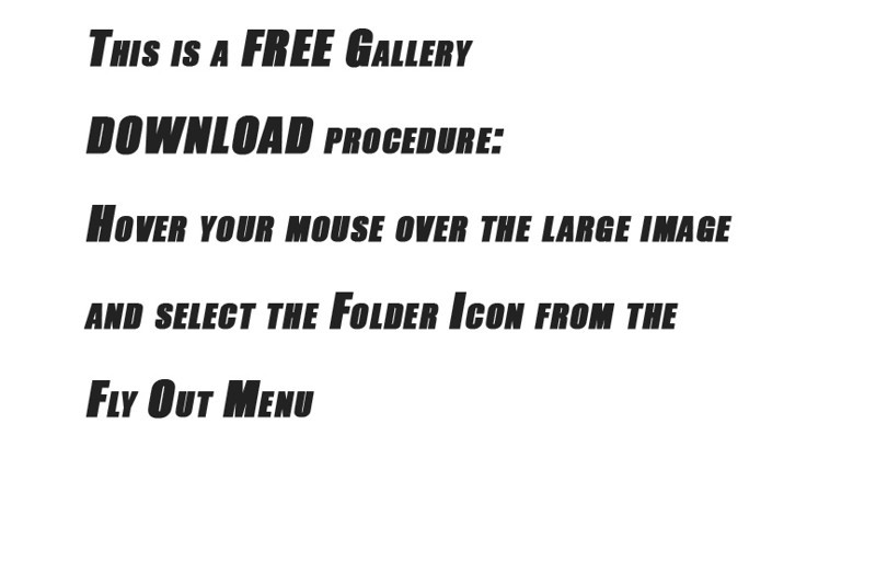 1 A free gallery - Copy