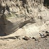"""Sandy bank after UNAVCO carving is removed.<br /> From short course held at Indiana University Geologic Field Station August 16-19 2016. Short course title: Using TLS and Structure from Motion (SfM) Photogrammetry in Undergraduate Field Education. <a href=""""http://www.unavco.org/education/advancing-geodetic-skills/short-courses/2016/field-education/field-education.html"""">http://www.unavco.org/education/advancing-geodetic-skills/short-courses/2016/field-education/field-education.html</a>"""