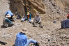 "Within Quarry #3, there were basically two sites, which we just called the ""lower"" and ""upper"" sites, since one was a bit uphill relative to the other, even though they were working the same set of strata.  So the group split into two parts.  I was in the lower site, which is shown here, along with Becky (front), Hailu and Christie (left), and Diane and Mike (center).  One of the crew (right) watches us while on a well-deserved break.  The quarry face is at the left sie of the picture -- in this area, the paper-thin shales of the Xiagou Formation have been tilted nearly vertically (seen behind Diane in the picture) by the same forces that pushed up the Qilian Mountains (India smashing into south-central Asia).  So it's really just a matter of walking up to the outcrop, inserting a thin chisel blade, and peeling off layer after layer until fossils emerge!  The shales tend to be pretty friable, though, so it's difficult to peel off big pieces before they break into smaller plates, which you can see littering the quarry floor here."