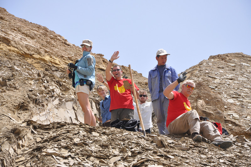 Ah, they've seen us!  And the competition to see who finds the most fossils in three days begins!