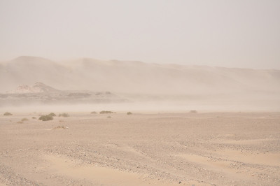 So I was hoping that we'd head out into the Taklamakan dunes -- and the weather at the grottoes sure seemed nice -- but literally as soon as we were away from the grotto parking lot, we found ourselves in a sandstorm.  Here's a shot out our bus window toward the dunes...